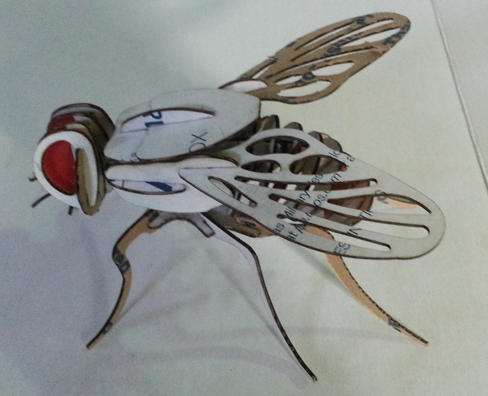 blackTooth Laser Cutter Example of a 3d puzzle of a fly